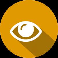 fs eye