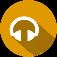 fs headphones