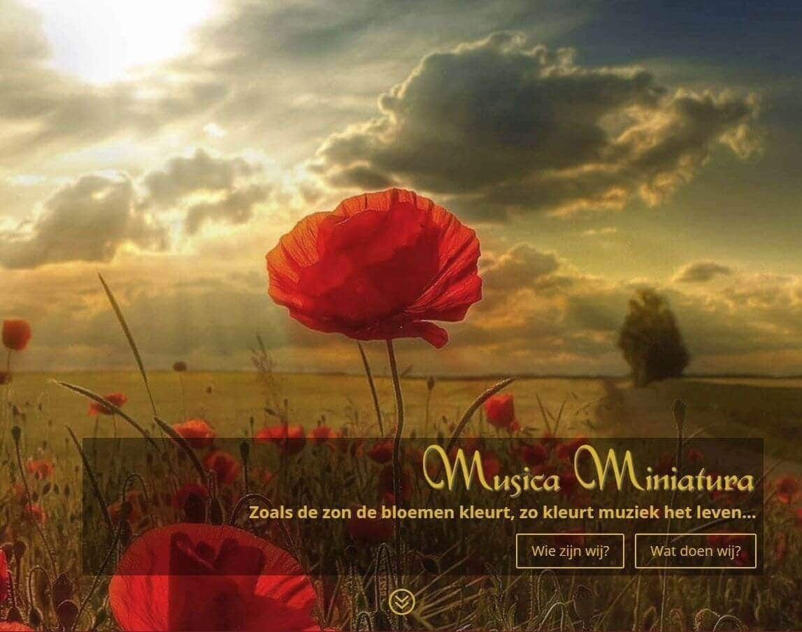 Afbeelding website Musica Miniatura