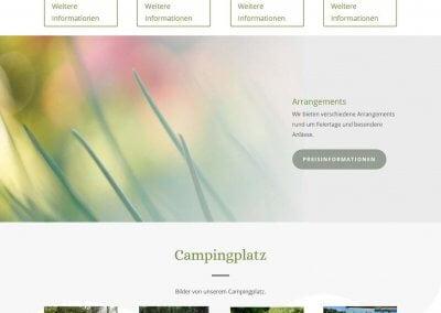 Volledige afbeelding website Vogelenzang.de
